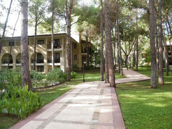 Champion Holiday Village : Rooms in amazing gardens