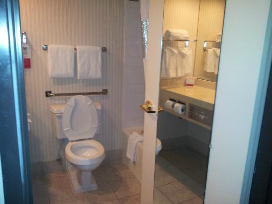 Ramada Englewood Hotel and Suites: bathroom