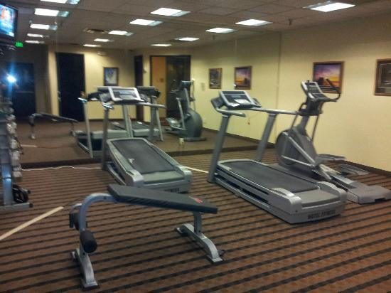 Ramada Englewood Hotel and Suites: Excercise room