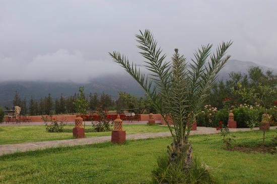 Hotel Tatfi: Le jardin au petit matin