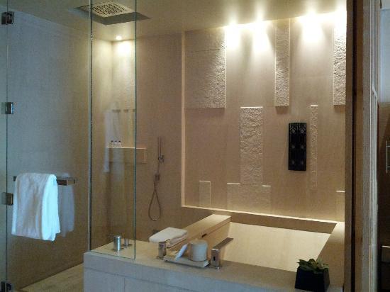 โรงแรมพาร์คไฮแอท ปักกิ่ง: shower