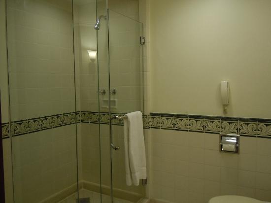 Sheraton Hanoi Hotel: 沖涼間