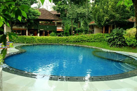 Cardamom County: Pool View