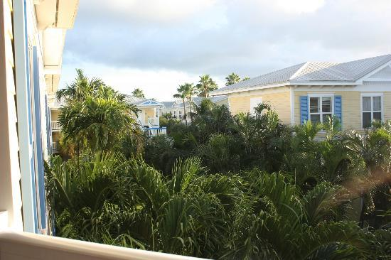Sheraton Suites Key West: view at the hotelgarden