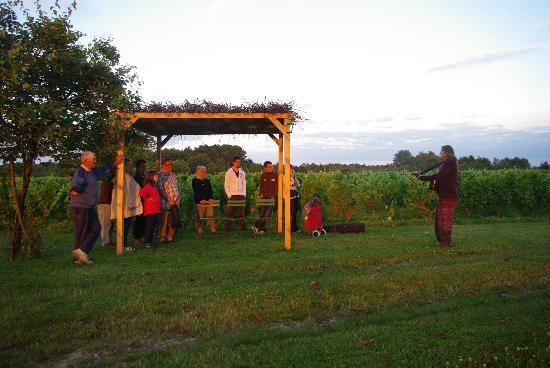 Domaine Sauvète: Soirées contées dans les vignes