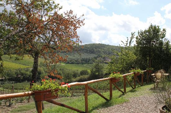 Ristorante Podere Le Vigne: View from the terrace