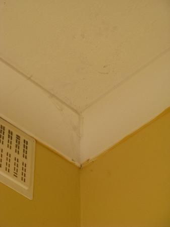 Euroclub Hotel: Telarañas en las habitaciones