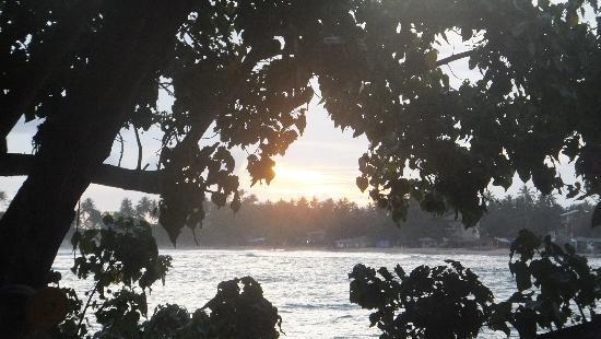Unawatuna, Sri Lanka: balcony view