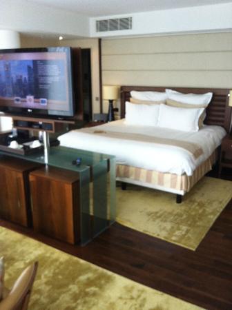 朱美拉法蘭克福酒店照片