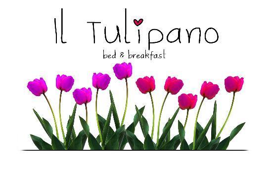 Il Tulipano B&B: Logo