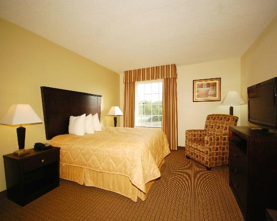 MainStay Suites: Standard Queen Efficiency with Fully Equipped Kitchen