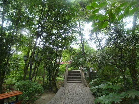 Huilongtan Park: 公園内風景