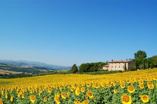 Photo of Agriturismo Casale dei Frontini Todi