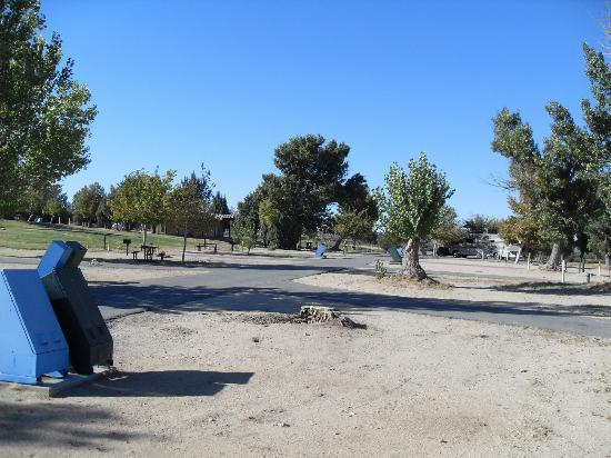 Mojave Narrows Regional Park Camping: Camping Area - Full Hook-Up