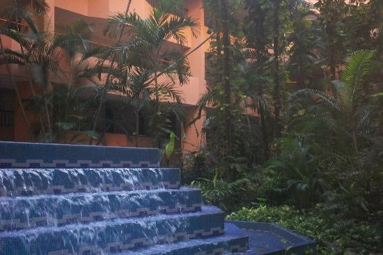 Marriott Puerto Vallarta Resort & Spa: Waterfall for the garden