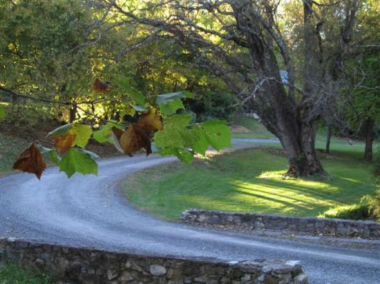 The Inn at Vaucluse Spring: the drive up to the Manor House
