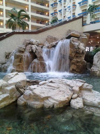 Renaissance Orlando at SeaWorld: Indoor waterfall