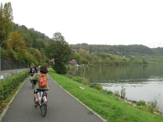 FEEL! Bike Tours: Along the Moselle.