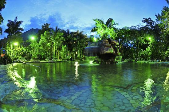 Baldi Hot Springs Hotel Resort & Spa : Piscina del Hongo