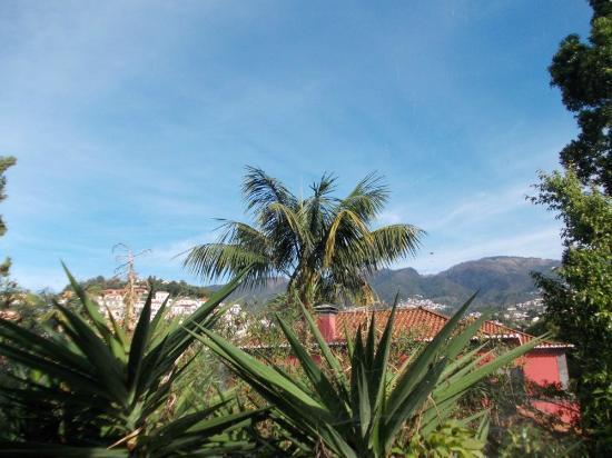 Quintinha São João: the view from my room