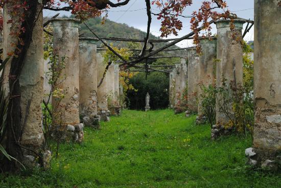 Masseria Astapiana Villa Giusso: giardino
