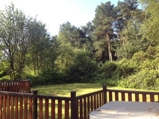 Darwin Forest Country Park: Outside area shared with the next door lodge