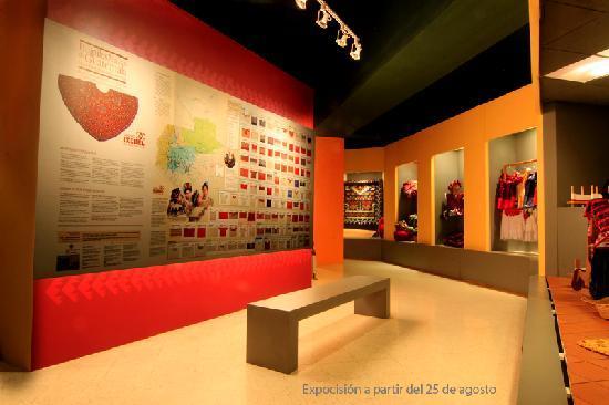 متحف إكستشل دل تراجي إنديجينا