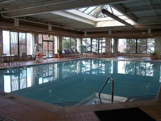 Holiday Inn Wilkes Barre East Mountain: Large Indoor pool, spa, sauna & playground