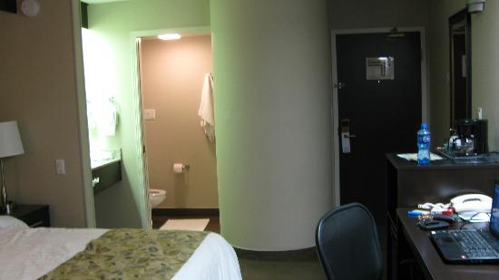Sleep Inn : View of the lavatory. The shower is circular!!