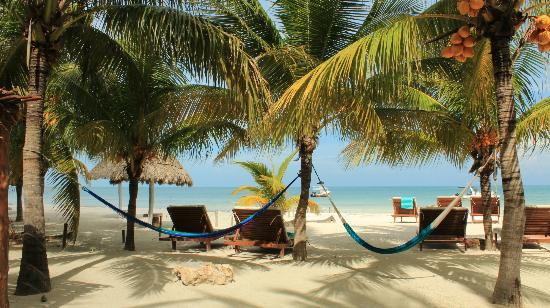 Holbox Island Best Beachfront Hotel