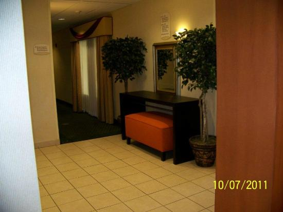 Fairfield Inn & Suites Indianapolis Noblesville: Hall
