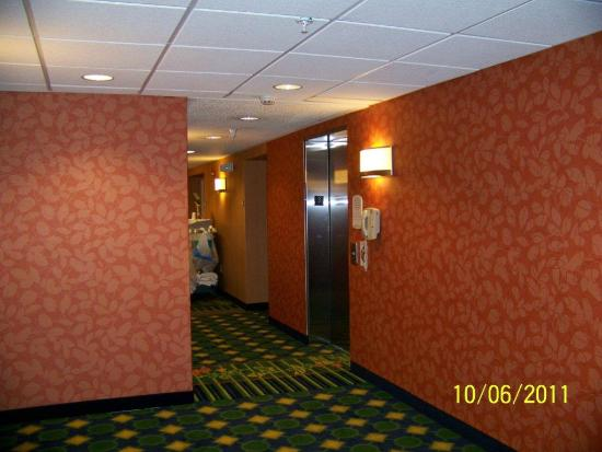Fairfield Inn & Suites Indianapolis Noblesville: Hall
