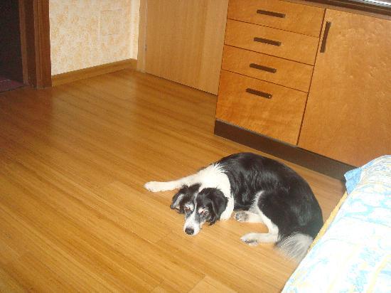Rudy in camera al Residence Lepontina