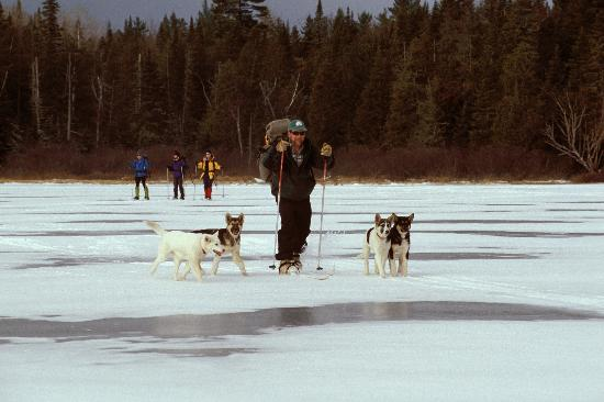 Mahoosuc Guide Service: Skiing in the Puppies - M. Dirk MacKnight