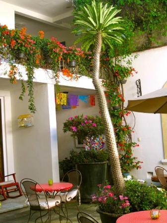 Casa de Las Bugambilias B&B: Courtyard