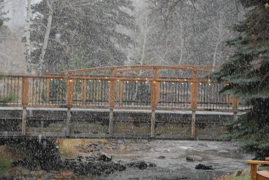 The Woodlands on Fall River: It's snowing!