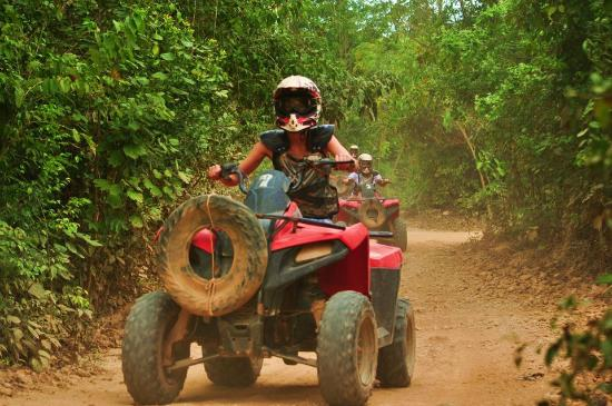 Selvatica Canopy Expedition and Adventure Tour: atv's