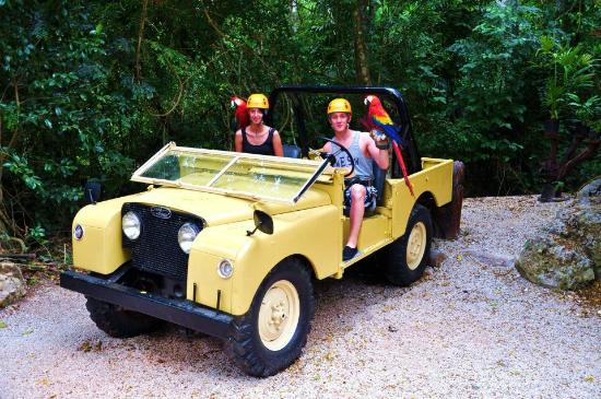 Selvatica Canopy Expedition and Adventure Tour: cool