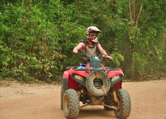 Selvatica: atv