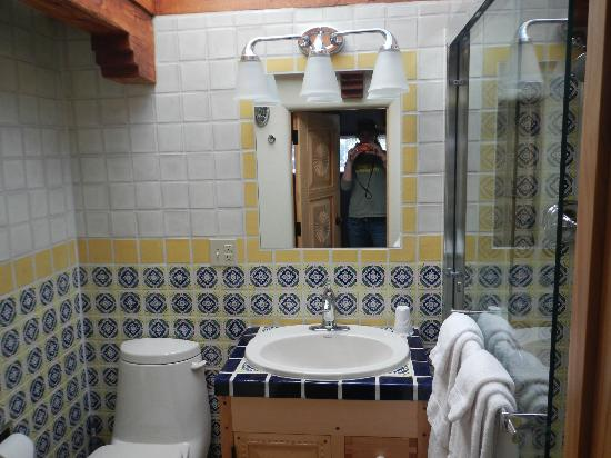 La Dona Luz Inn, An Historic Bed & Breakfast: Bathroom!! Look at the tile!