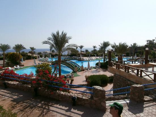 Veraclub Queen Sharm: Piscina