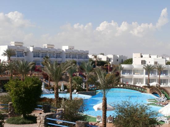 Queen Sharm Resort: Piscina erea view