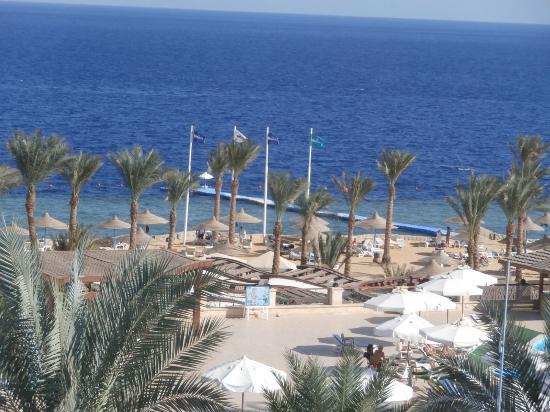 Queen Sharm Resort: Vista mare