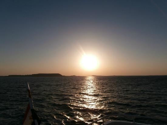 Queen Sharm Resort: Tramonto