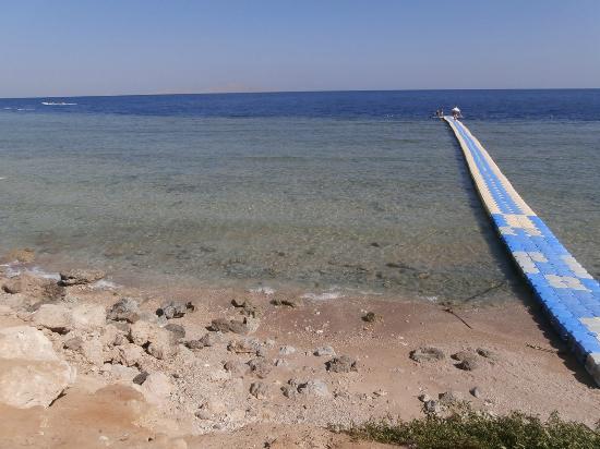 Queen Sharm Resort: Il pontile