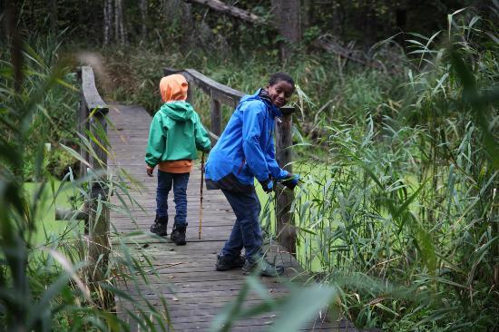 Kemeri National Park: Kemeri walk