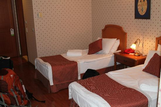 Erguvan Hotel: room 26