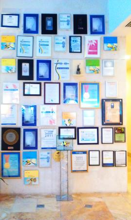 Barut Lara: 49 awards says it all