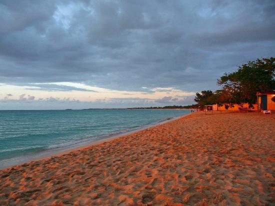 Coral Seas Garden: Hotelbeach