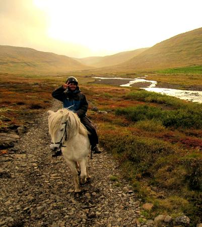 Heydalur Guesthouse: Horse riding along the river
